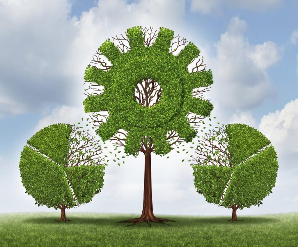 La capacità principale di un innovatore non è evitare un fallimento, ma saper rimediare agli errori in un percorso di crescita