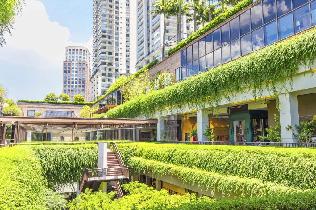Diventiamo vasai per cambiare l'aspetto delle nostre città. Dobbiamo abbellire le strade in cui camminiamo