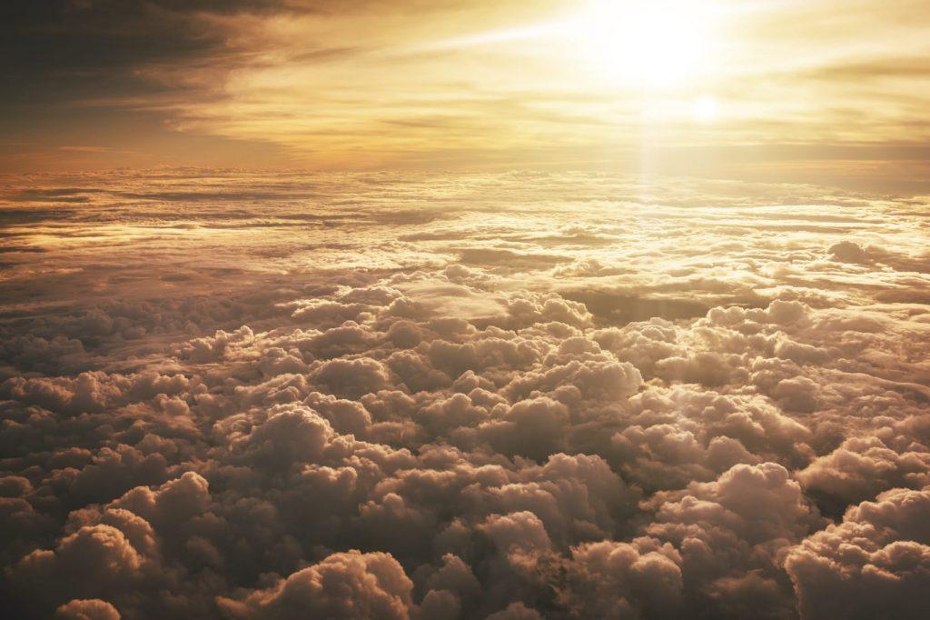 Coloro che sognano di giorno sanno molte cose che sfuggono a chi sogna soltanto di notte