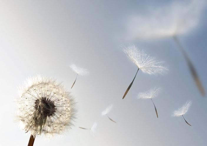 I suggerimenti di Action for Happiness: sii resiliente, e accetta (quarta parte)