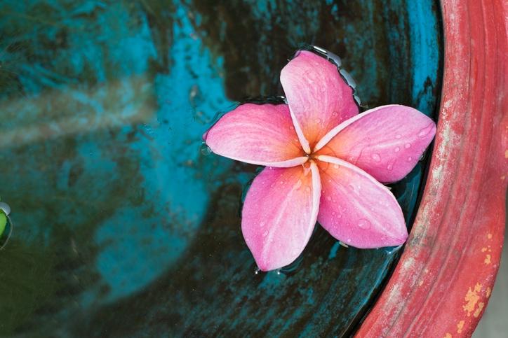Riscopri il potere della gentilezza in 10 piccoli gesti
