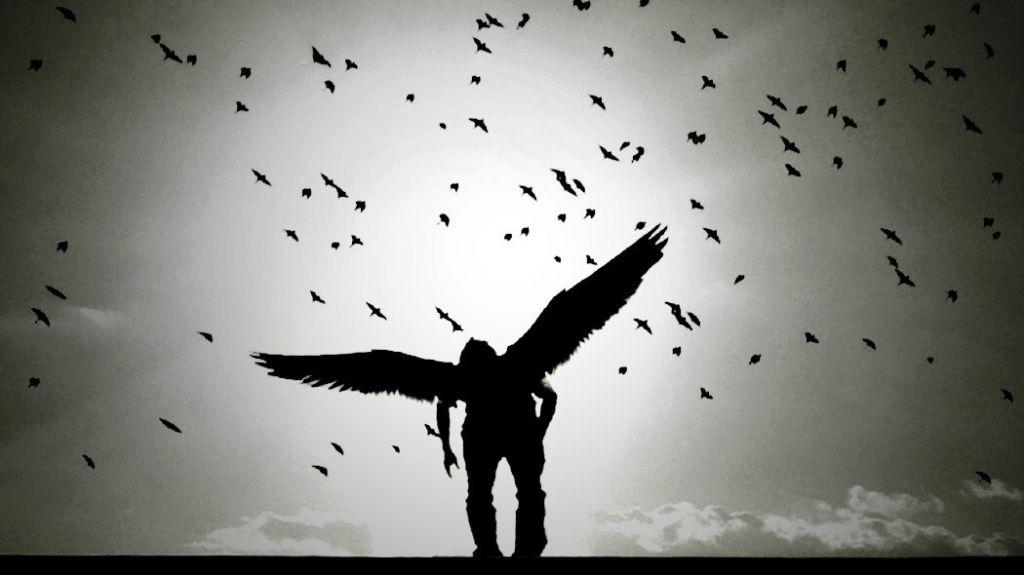 Siamo poco più degli animali e poco meno degli angeli