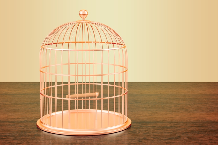 Come liberarci da tutte le gabbie che non vediamo più
