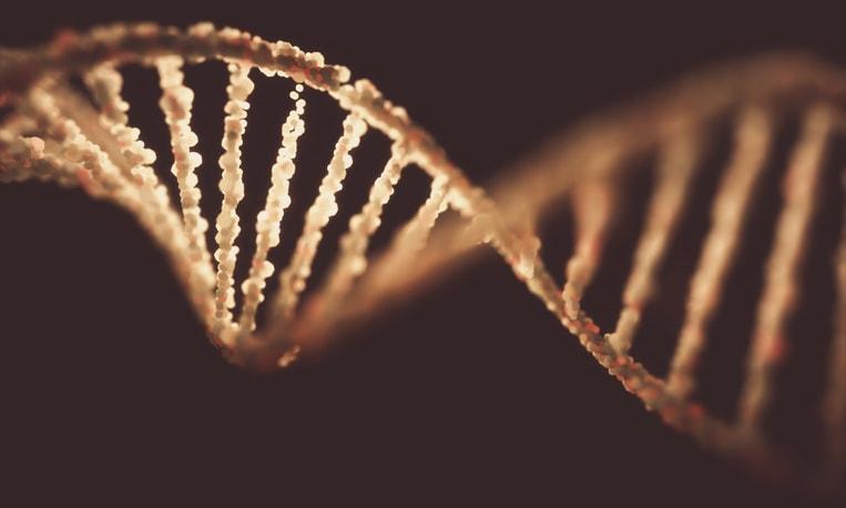 La scienza può aiutarci a comprendere chi siamo?