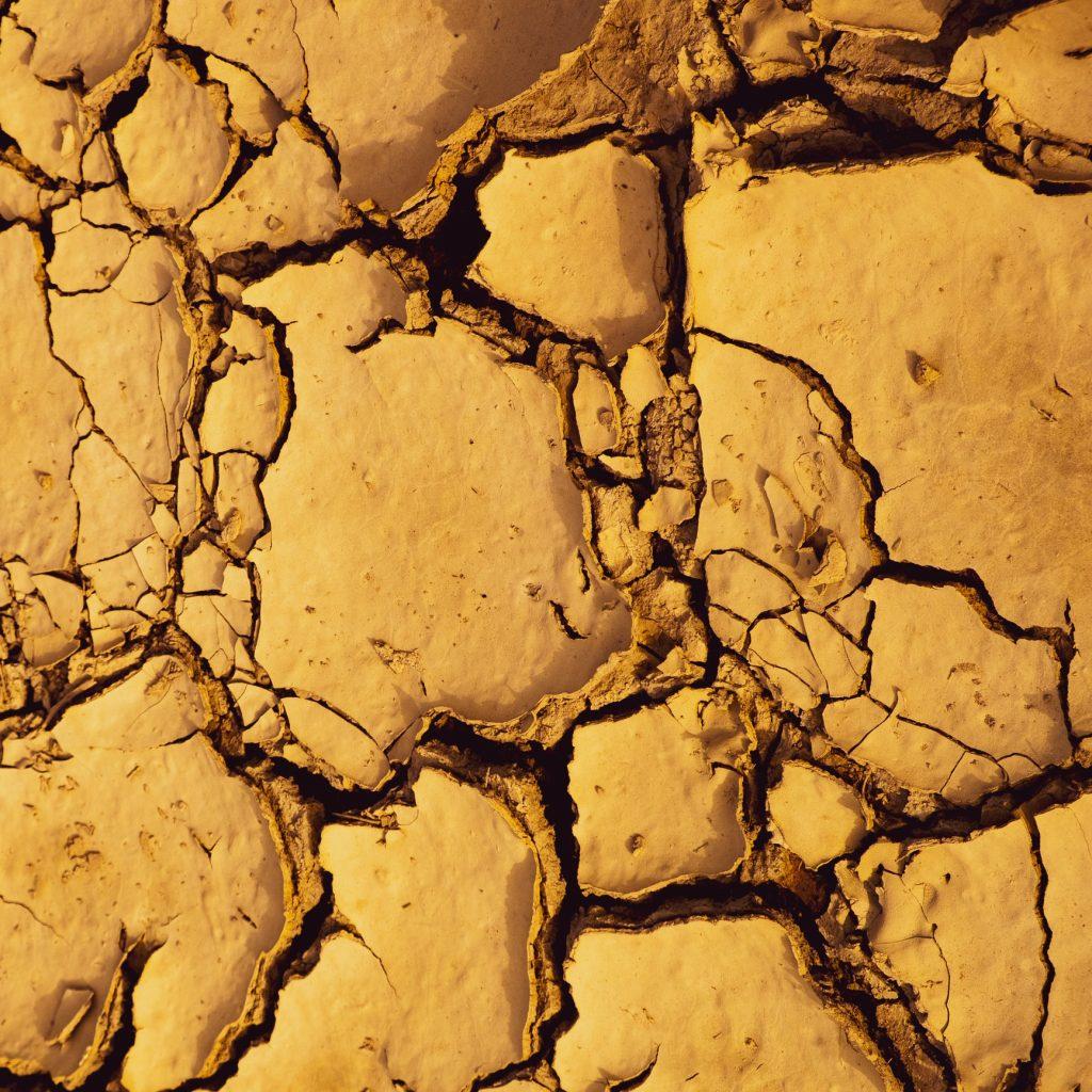 Broken Nature in Triennale. Il design sfida l'emergenza climatica