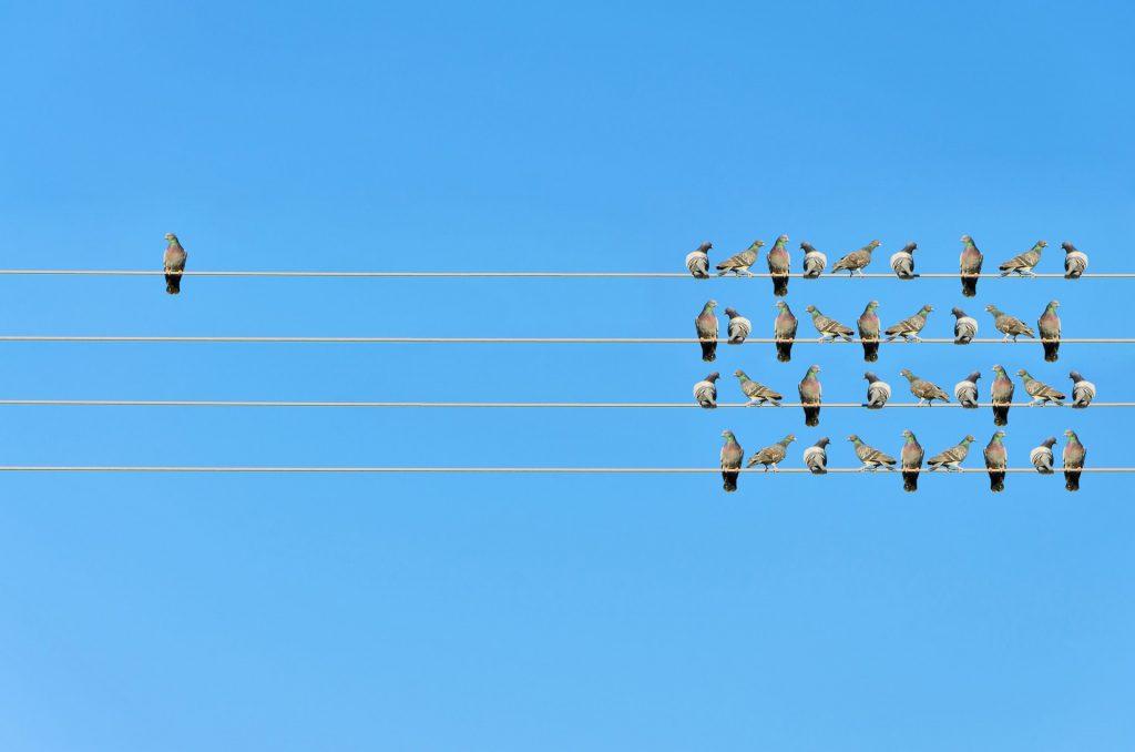 Il contagio delle emozioni che ti rende un buon leader