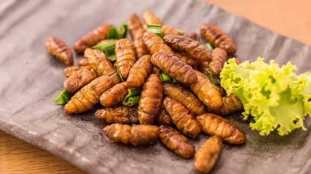 Mangiare insetti in Italia e in Europa: ora si può. 7 cose da sapere