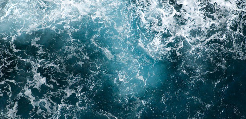 La Giornata mondiale degli Oceani ci ricorda quanto sia fragile il nostro ecosistema